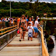 Escorted Natural Brazil